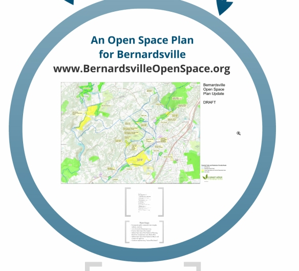 Click here to link to Conservation Resources Presentation to the Bernardsville Borough Council on 4/22/2013
